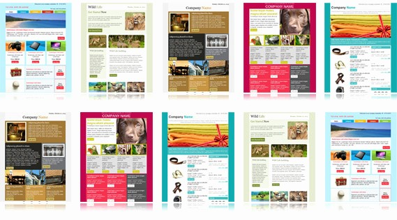 Newsletter Design Templates Free Download New Download Free Email Templates