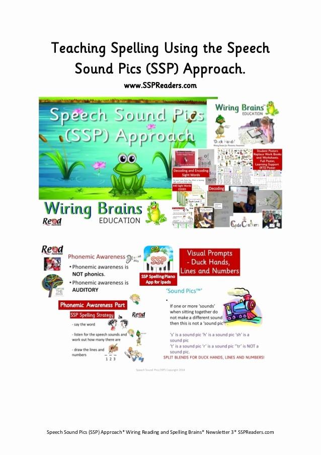 Newsletter for Parents From Teachers Lovely Ssp Newsletter 3 for Parents and Teachers