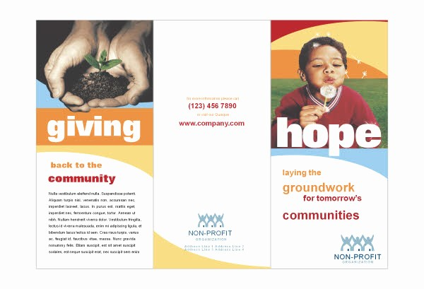 Non Profit organization Brochure Sample Inspirational 14 Best S Of Sample Non Profit Brochures Non Profit