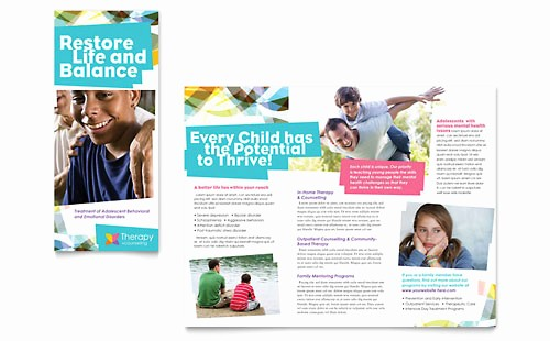 Non Profit organization Brochure Sample Luxury Non Profit Marketing Brochures Flyers Newsletters