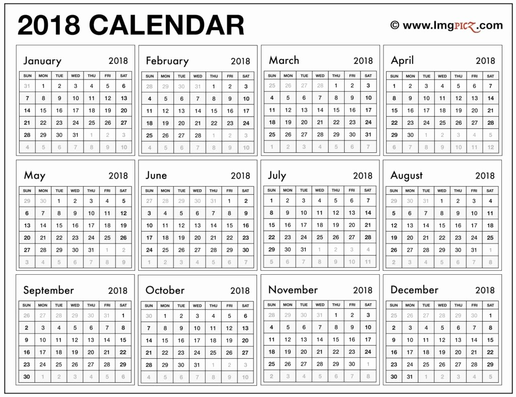 One Page 12 Month Calendar Beautiful 12 Month Calendar On One Page Excel