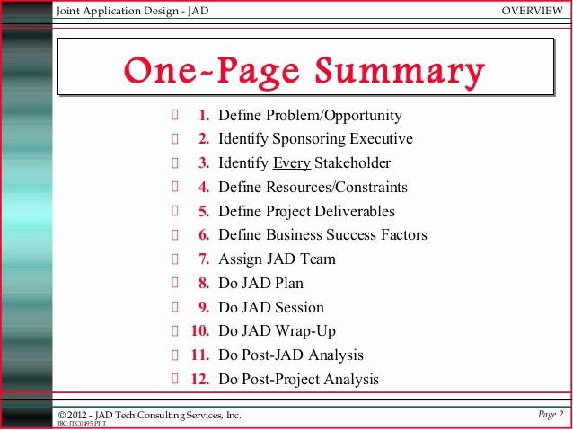 One Page Executive Summary Example Awesome Jad Joint Application Development