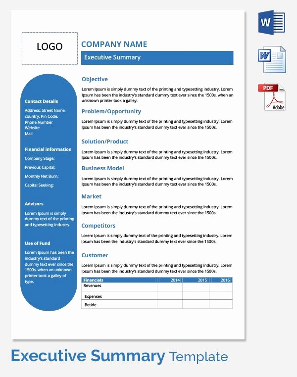 One Page Executive Summary Example Beautiful Executive Summary Template … Branding