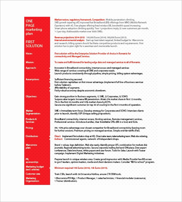 One Page Executive Summary Example Best Of 9 E Page Marketing Plan Templates Doc Pdf Excel