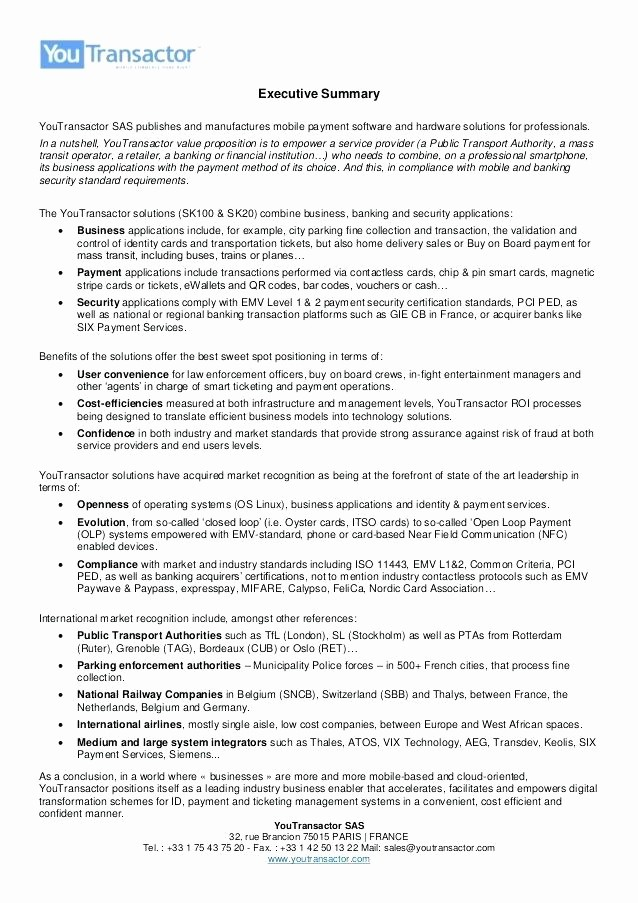 One Page Executive Summary Example Best Of Sample Business Project Report 1 Page Executive Summary