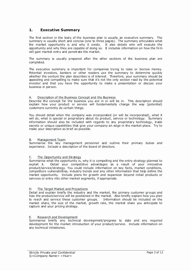 One Page Executive Summary Example Inspirational E Page Executive Summary Template Effortless Vision