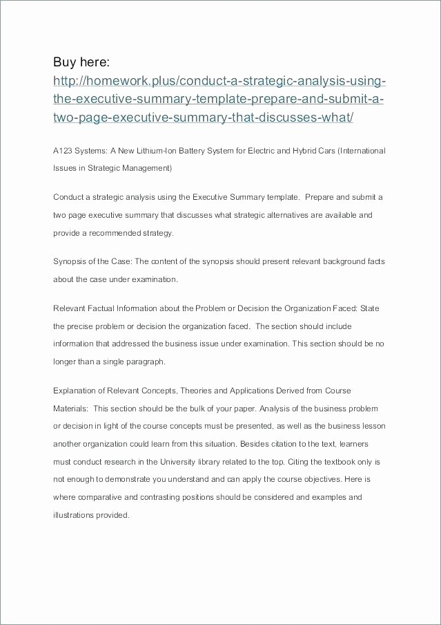 One Page Executive Summary Example Inspirational Executive Summary Report Template 1 Page format