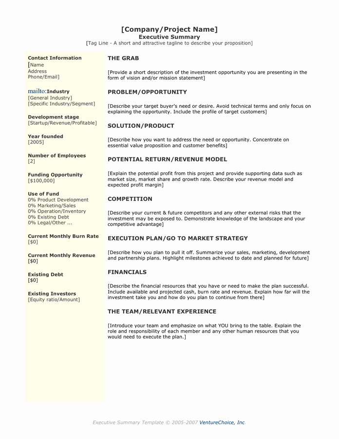 One Page Executive Summary Example Inspirational Executive Summary Template In Word and Pdf formats