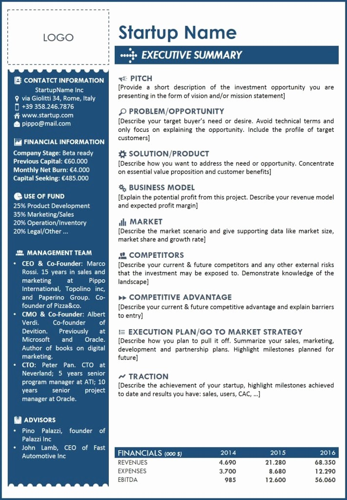 One Page Executive Summary Example Luxury 5 Free Executive Summary Templates Excel Pdf formats