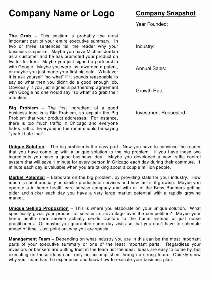 One Page Executive Summary Example Luxury Executive Summary Template