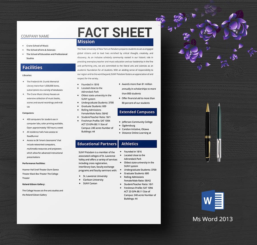 One Page Fact Sheet Template Best Of 8 Free Fact Sheet Templates Survey Campaign