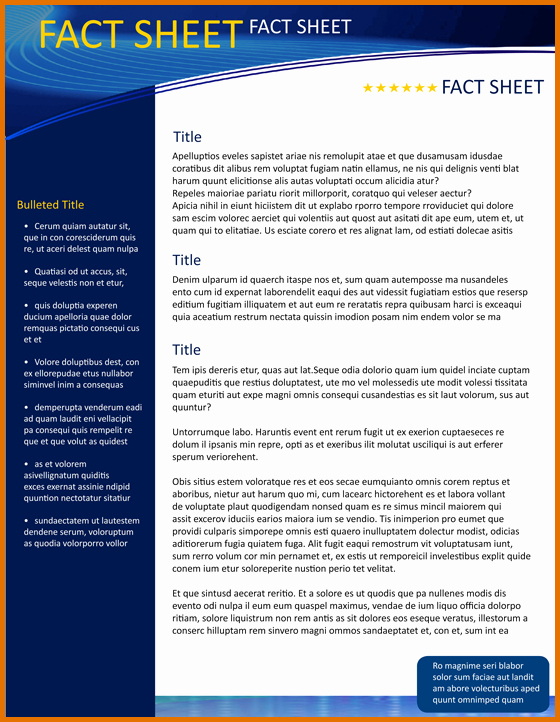 One Page Fact Sheet Template Inspirational 8 Fact Sheet Template Microsoft Wordreference Letters
