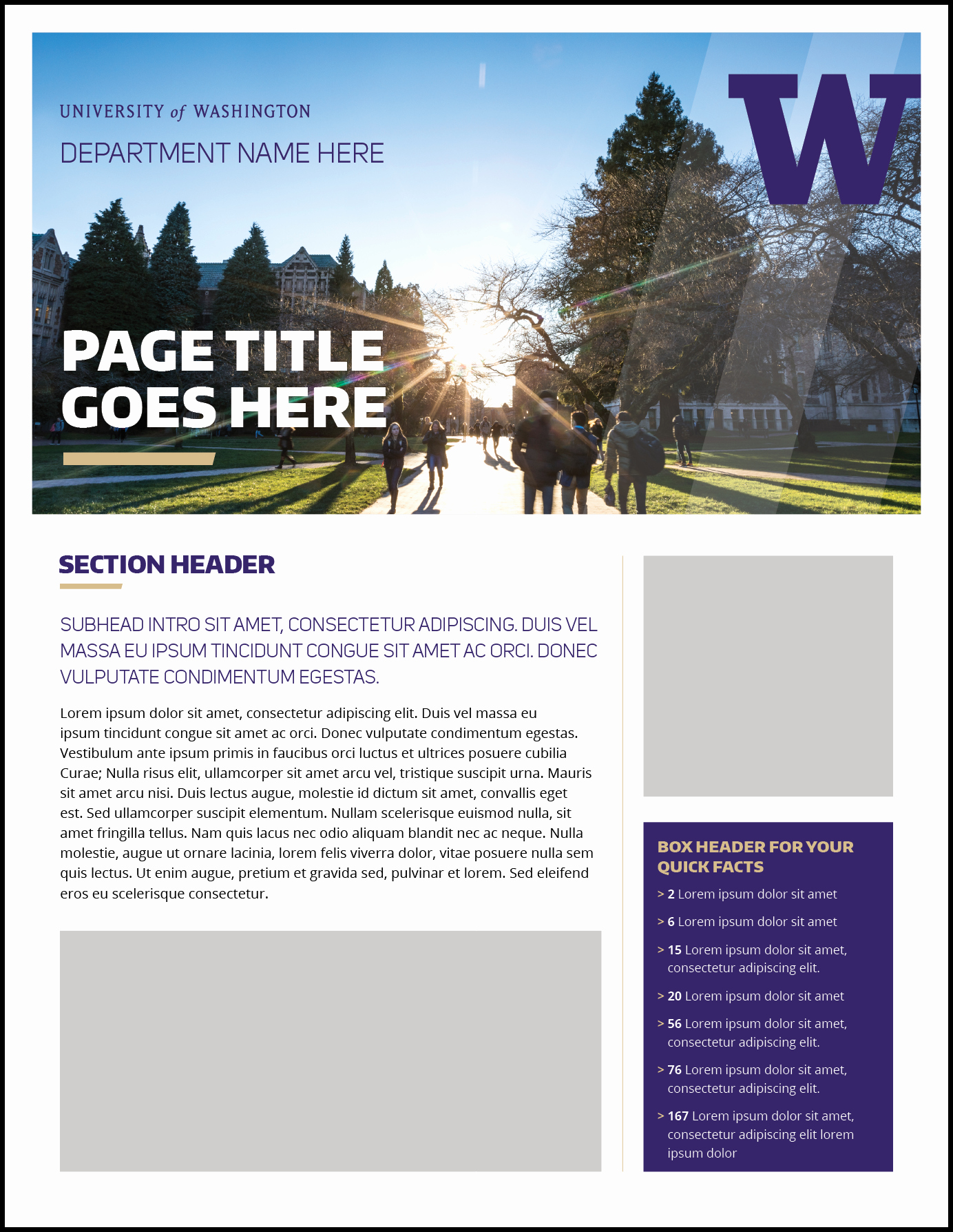 One Page Fact Sheet Template Luxury Fact Sheet