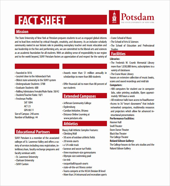 One Page Fact Sheet Template New 24 Fact Sheet Templates Pdf Doc