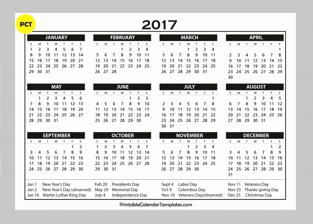 One Page Year Calendar 2017 Unique 2017 Calendar Template 2017 Calendar with Holidays