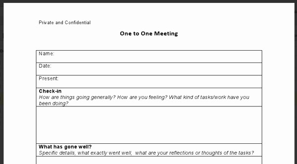 One to One Meeting Templates Elegant 1 1 Meeting form