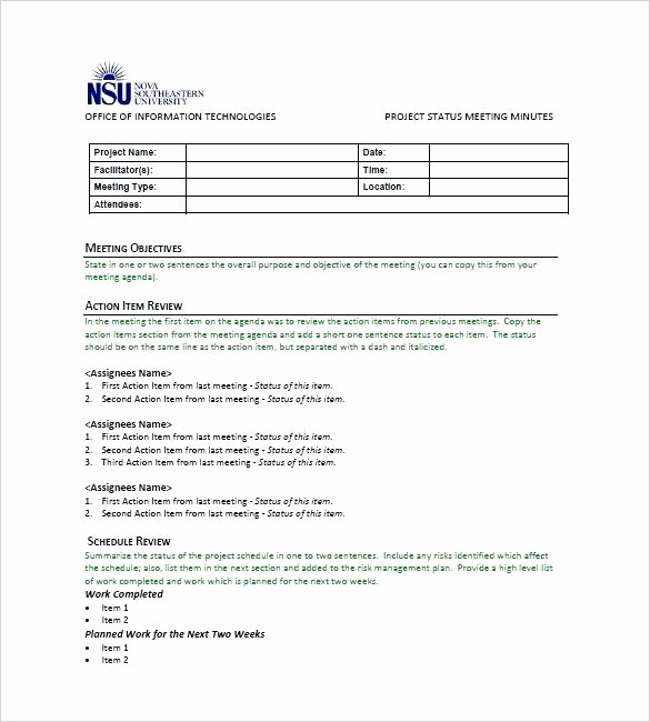 One to One Meeting Templates Inspirational Status Meeting Agenda Template Agendas Templates Download