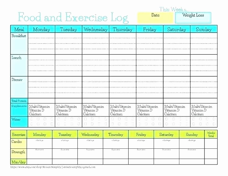 Online Food and Exercise Journal Lovely Food Log Spreadsheet Nutrition Spreadsheet Template Meal