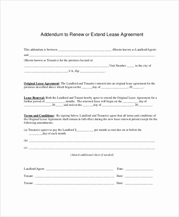 Option to Extend Lease Letter Elegant 8 Lease Renewal Templates Free Sample Example format
