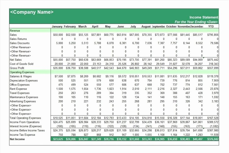 P and L Template Excel Elegant P&l Statement Statement Trakore Document Templates