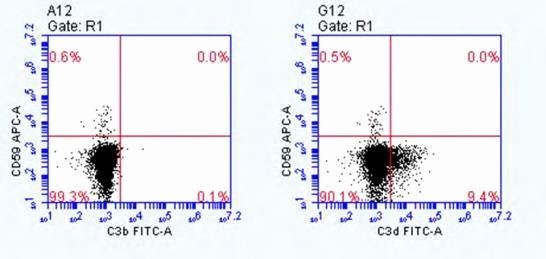 Page Line Deposition Summary Sample Lovely Plement C3d Antibody 053a 1149 3 1 4 [alexa Fluor