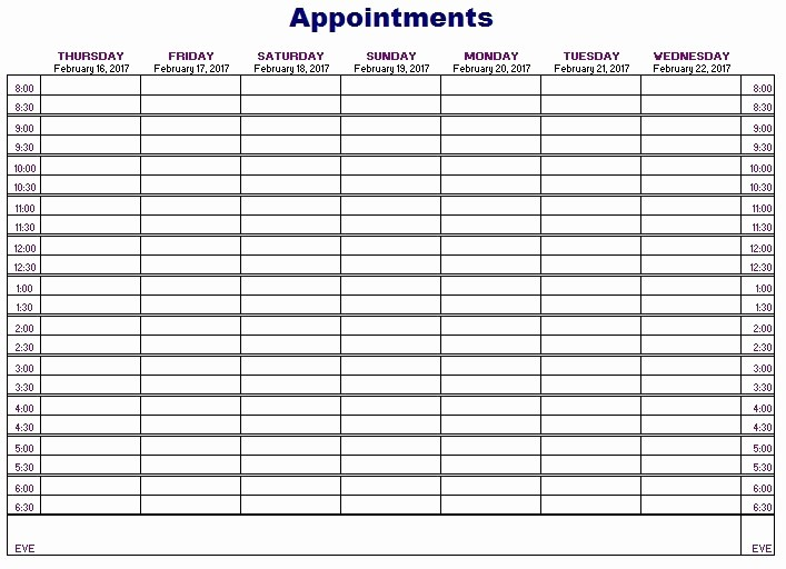 Patient Appointment Scheduling Template Excel Elegant 12 Free Sample Appointment Schedule Templates Printable