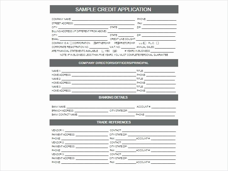 Personal Credit Application form Free Lovely Personal Guarantee Template Uk Free New Customer