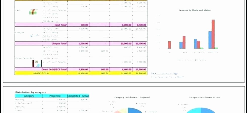 Personal Financial Plan Template Excel Unique Personal Financial Statement Template Free Plan Examples
