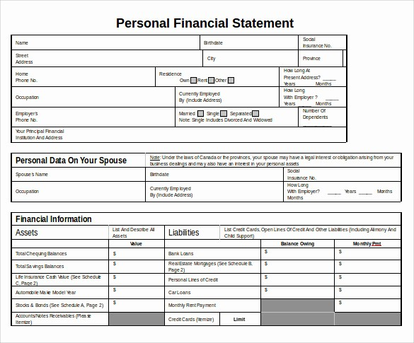 Personal Financial Plan Template Word Inspirational 12 Sample Personal Financial Statements