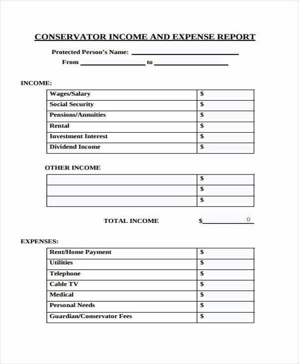 Personal Income and Expense Sheet Unique 28 Expense Report form In Pdf