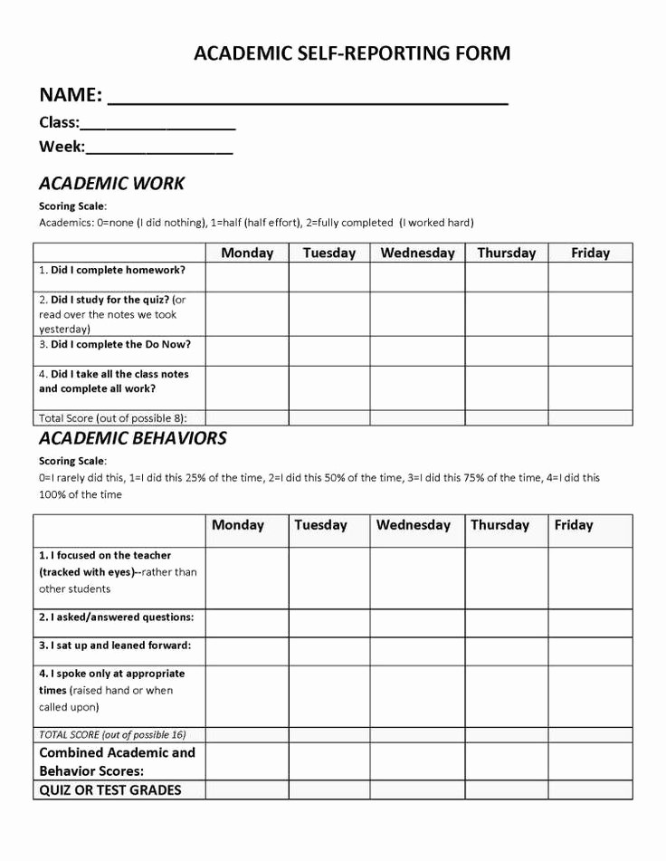 Personal P&l Template Best Of Risk Control Self assessment Template New 35 Self