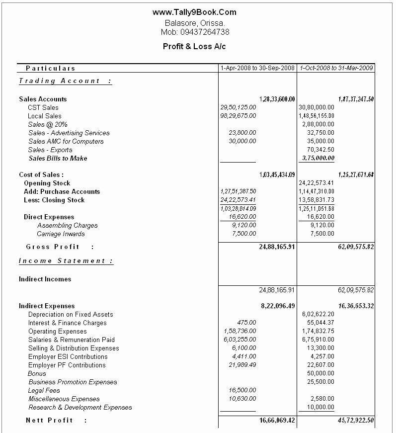 Personal P&l Template New Profit and Loss Account Search Results