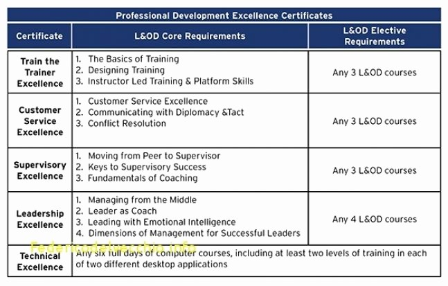 Personal P&l Template Unique Five Year Career Development Plan Template Download 26