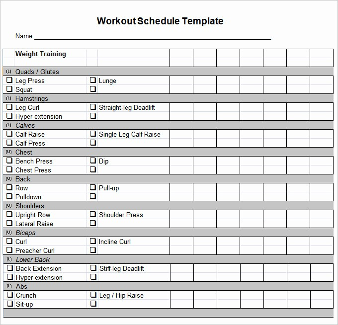 Personal Training Workout Log Template Best Of Workout Template Excel