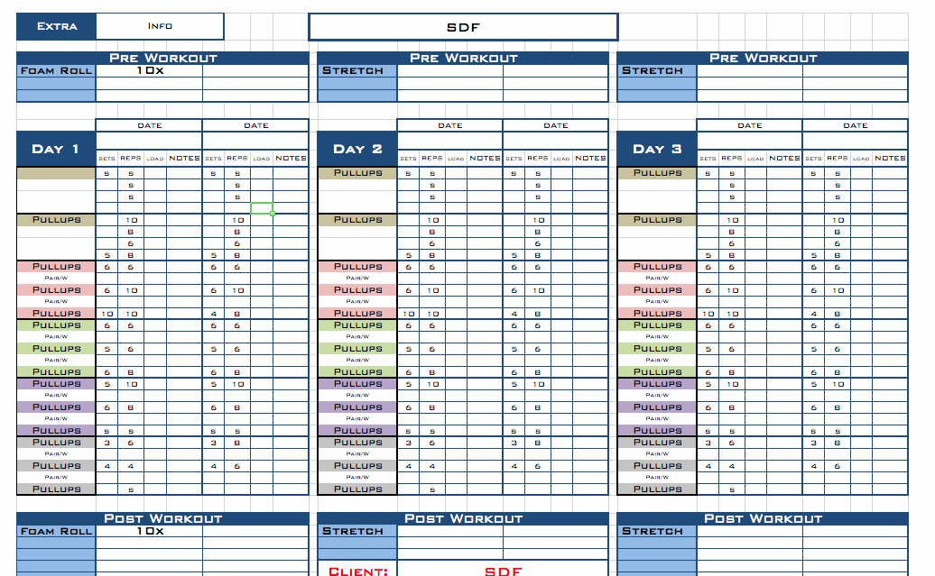Personal Training Workout Log Template Elegant Excel Workout Templates Free
