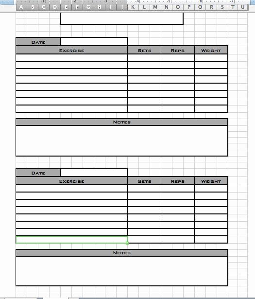 Personal Training Workout Log Template Elegant Personal Workout Log Template