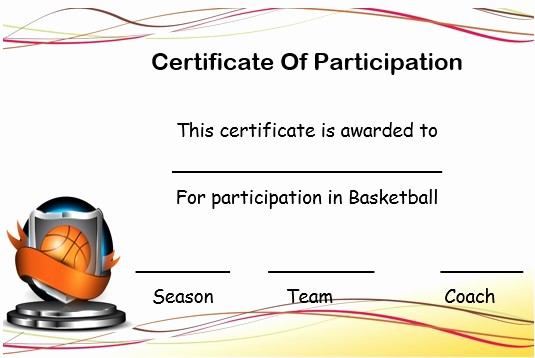 Player Of the Game Certificates Best Of 27 Professional Basketball Certificate Templates Free