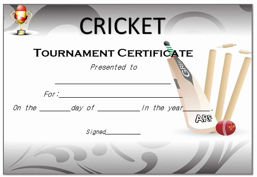 Player Of the Game Certificates Luxury 22 Well Designed Cricket Certificate Templates Free Word