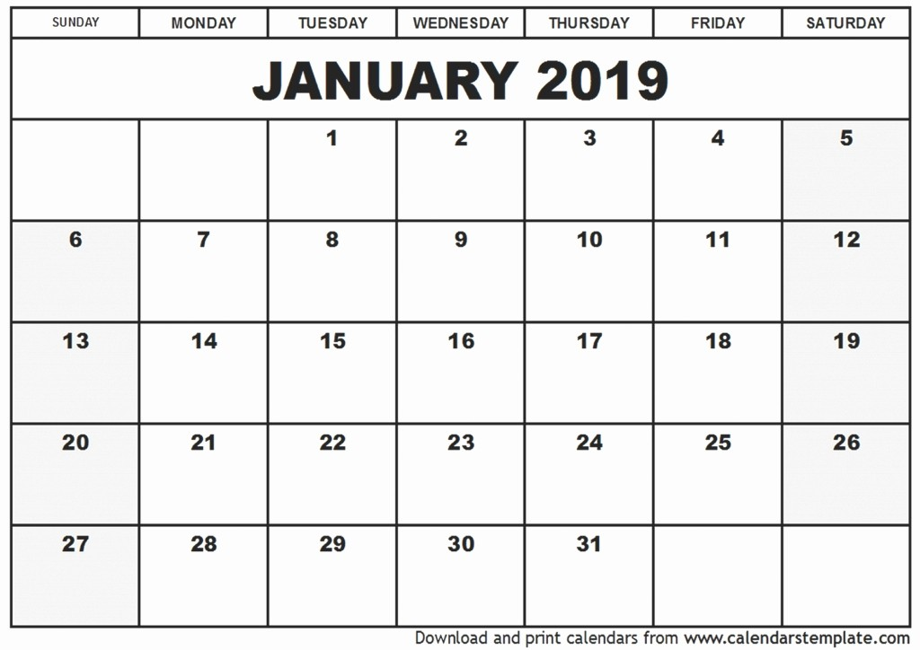 Printable 12 Month Calendar 2019 Awesome January 2019 Printable Calendar