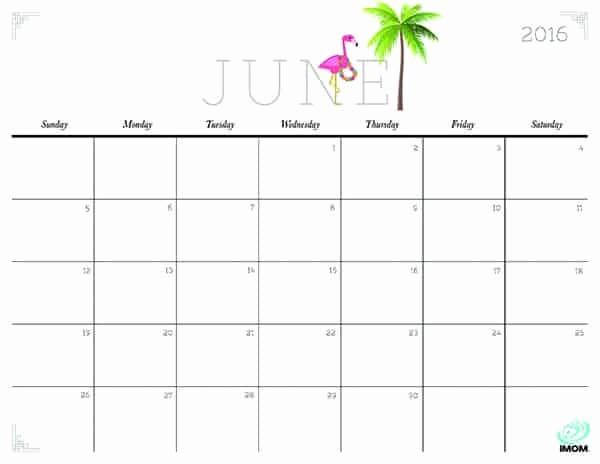Printable 6 Month Calendar 2016 Luxury 20 Free Printable Calendars for 2016