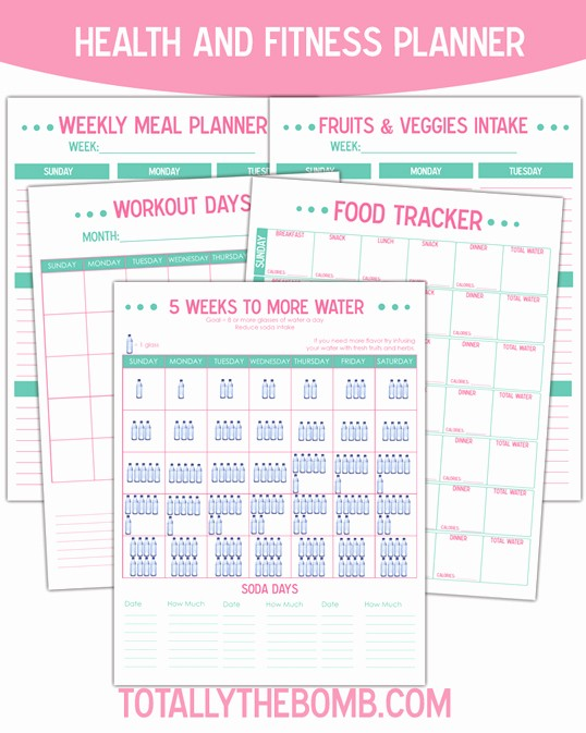 Printable Food and Exercise Journal Best Of Free Printable Health and Fitness Planner