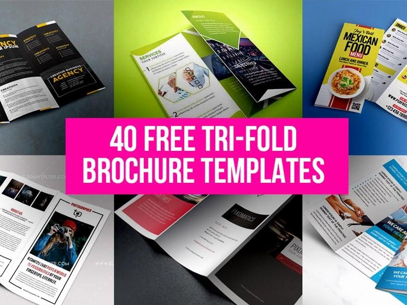 Printable Tri Fold Brochure Template Beautiful 40 Free Tri Fold Brochure Templates Free Psd