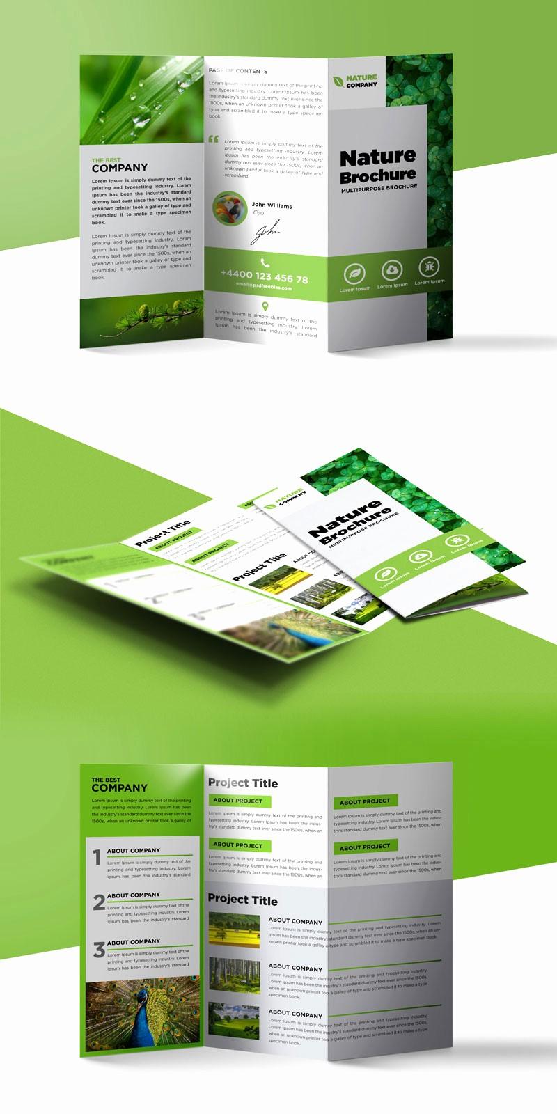 Printable Tri Fold Brochure Template Best Of Nature Tri Fold Brochure Template Free Psd