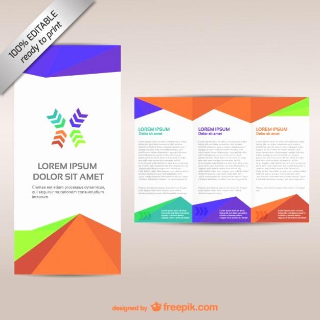 Printable Tri Fold Brochure Template New Colorful Tri Fold Brochure Template Vector