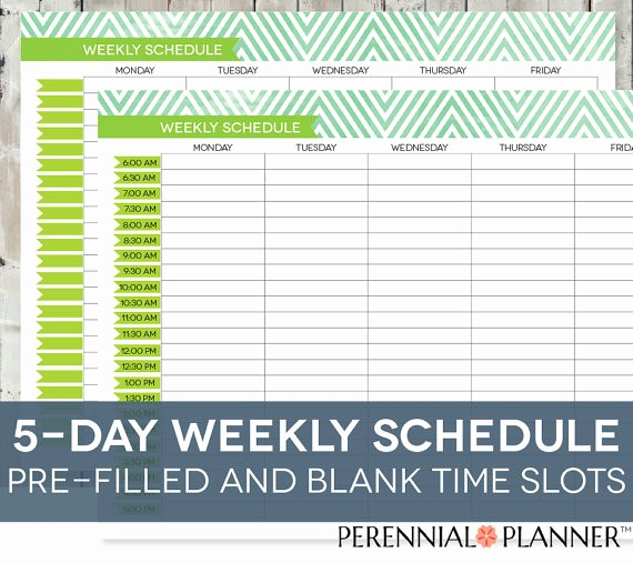 Printable Weekly Calendars with Times Luxury Daily Schedule Printable Editable Times Half Hourly Weekly