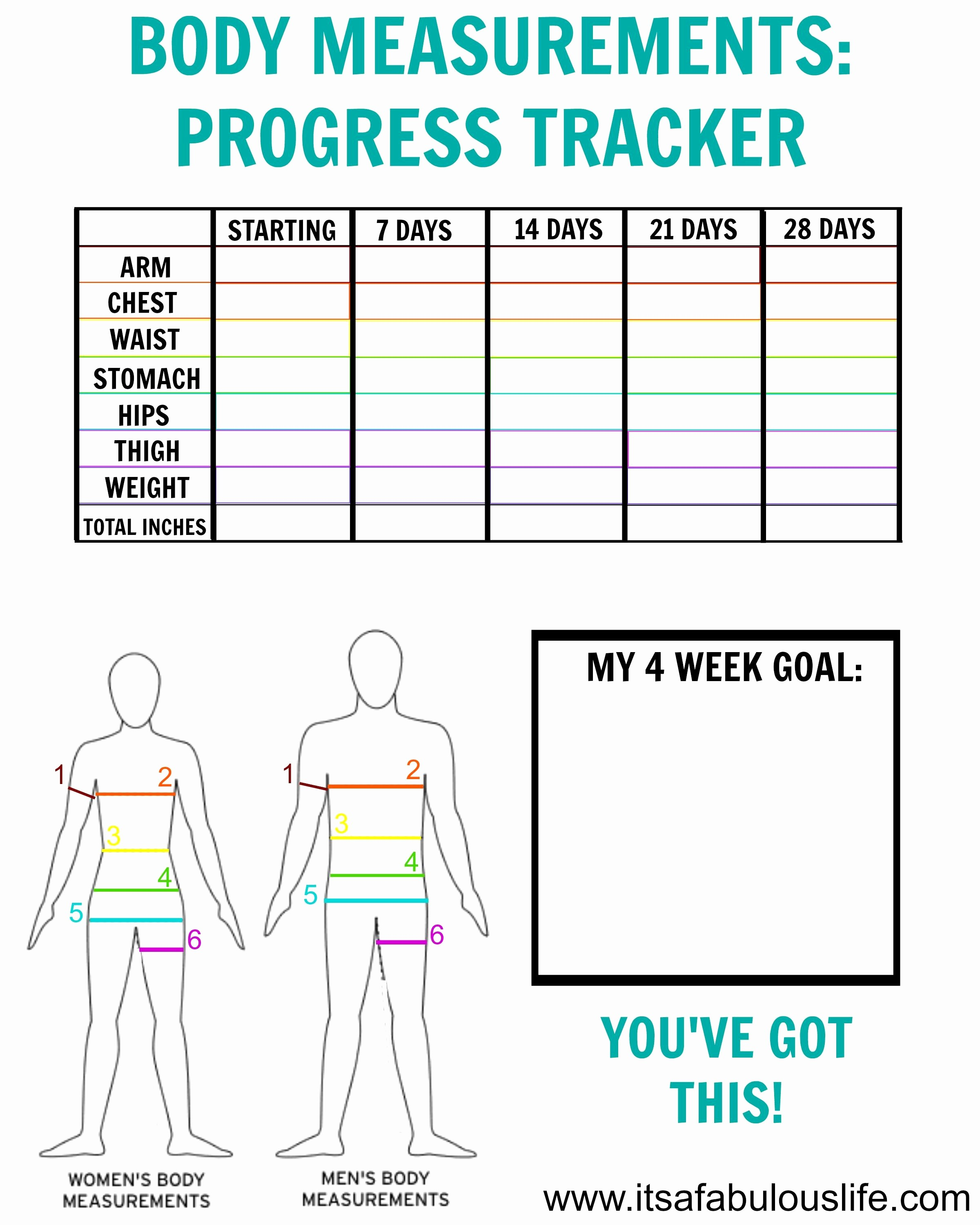 Printable Weight Loss Measurement Chart Fresh How to Take Body Measurements Free Printable