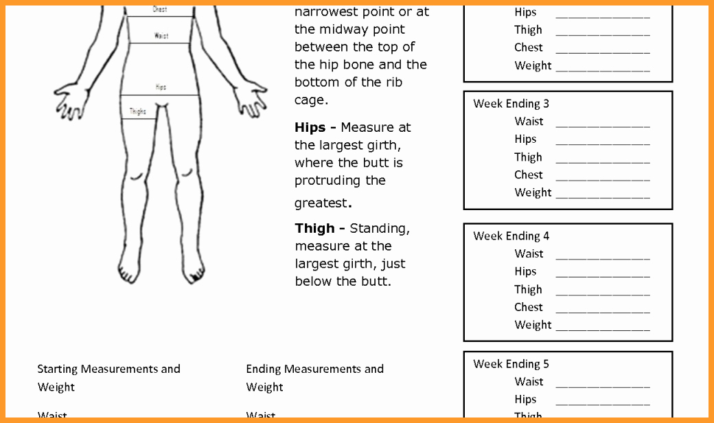 Printable Weight Loss Measurement Chart Inspirational 6 7 Body Measurement Chart for Weight Loss