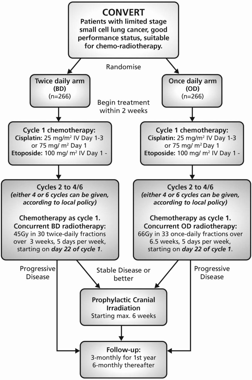Process Map Vs Flow Chart Fresh Popular Clinical Trial Process Flow Chart Ir55