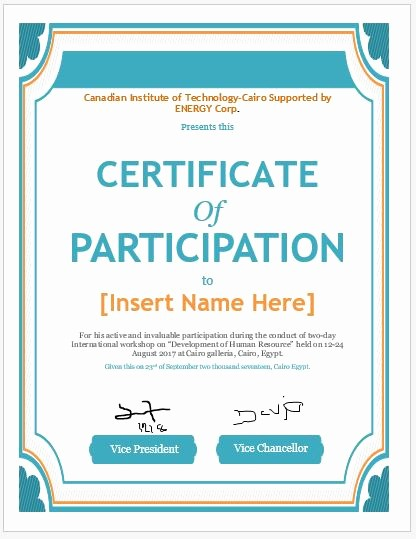 Professional Certificate Templates for Word Beautiful Certificate Of Participation Templates for Ms Word