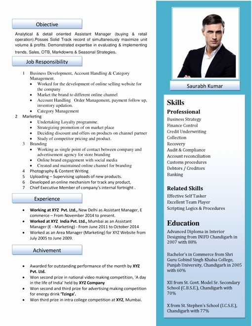 Professional Curriculum Vitae Template Download Lovely Curriculum Vitae format